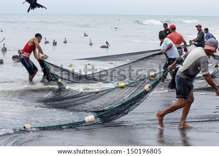 SAN CLEMENTE, MANABI, ECUADOR-Circa  August 2013:Fishermen pull in their nets  in San Clemente, Ecuador on Circa August 2013. Traditional Daily catches feed the village and provide income