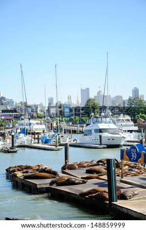 San Francisco piers 39 - stock photo