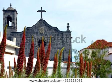 San Pedro Church and tajinaste flowers in Vilaflor,Tenerife,Canary Islands. - stock photo