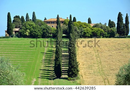 SAN QUIRICO Dâ??ORCIA, ITALY - JUNE 7 2016: Cypress trees row is one of the feature of the Orcia valley in Tuscany.