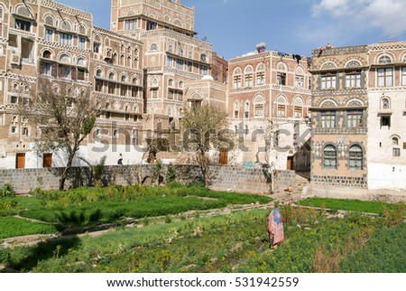 Sana, Yemen - 18 January 2008: woman taking care of the vegetable garden in front of the decorated houses of old Sana unesco world heritage