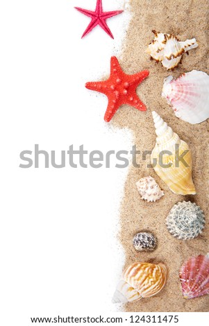 sand and sea shells isolated - stock photo