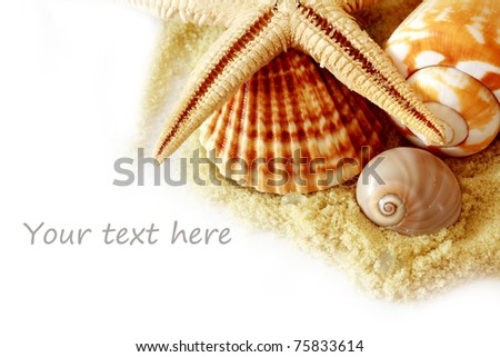 Sand and seashells over white.Vacation concept .seashells border - stock photo