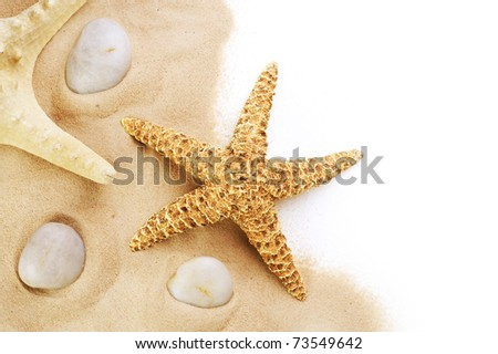 Sand and seastar border over white.Vacation concept - stock photo