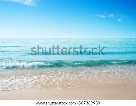 Sand beach and sea wave. Seascape in sunny day