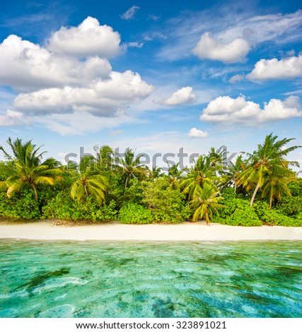 Sand beach with palm trees and cloudy blue sky. Tropical island landscape - stock photo