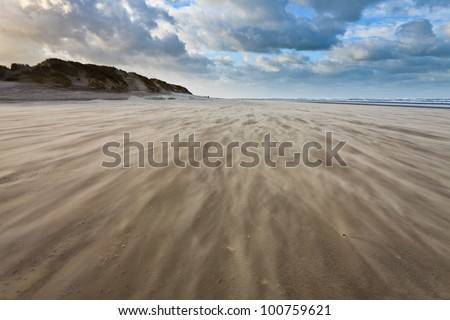 Sand blowing over the beach near the sea - stock photo