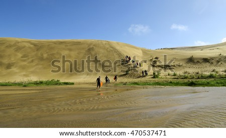 Sand boarding at Cape Reinga/Te Rerenga Walrua sand dunes, New Zealand