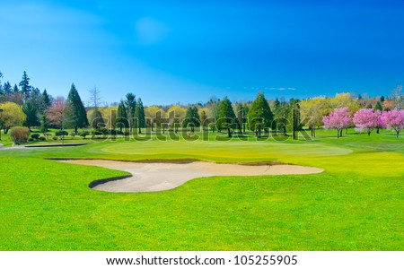 Sand bunker on the golf course at the blossom time. - stock photo