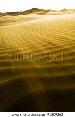SAND DUNE - stock photo