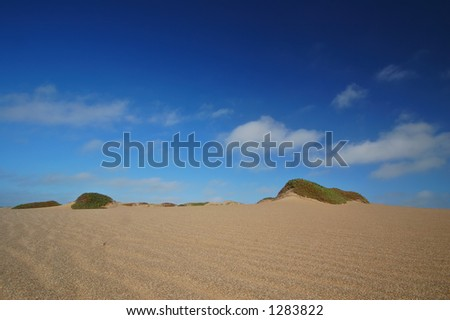 sand dune at Point Reyes national seashore, Marin County, California - stock photo