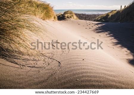 sand dune at the lone beach - stock photo
