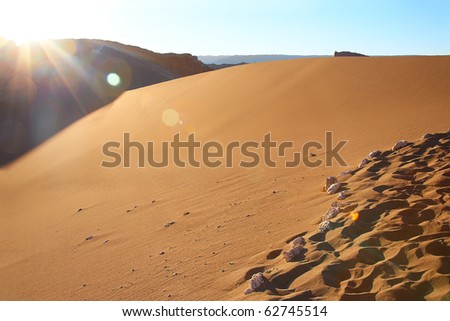 sand dune at the Valle de la Luna (Moon Valley) in Atacama desert, Chile