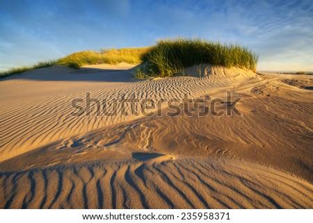 sand dune beach sea view white clouds sunny blue sky, Leba, Baltic Sea, Poland  - stock photo