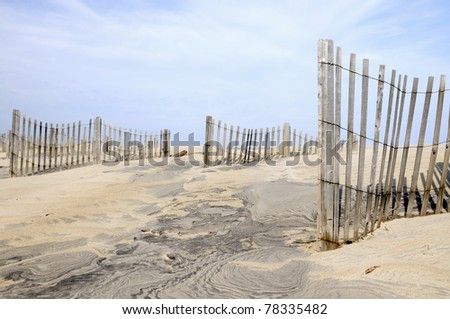 Sand Dune Fences on Windy Day