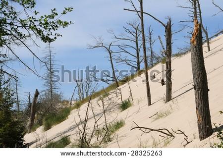 Sand dune in Leba in Polish - stock photo
