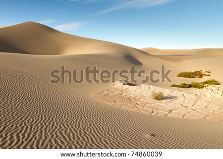 Sand Dune Landscape (Death Valley National Park) - stock photo