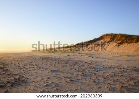 Sand Dune on Foggy Morning - stock photo
