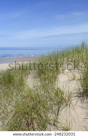 Sand Dunes and Beach - stock photo