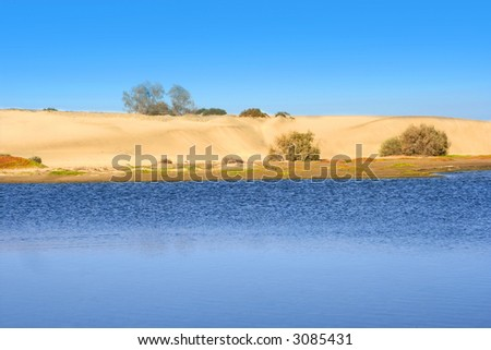 Sand dunes and oasis of '' Mas Palomas '' in Gran Canaria. - stock photo