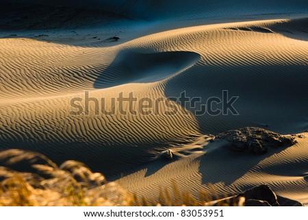 Sand dunes at dawn - stock photo