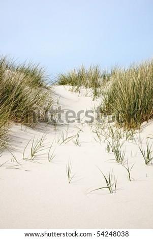 Sand dunes at the beach - stock photo