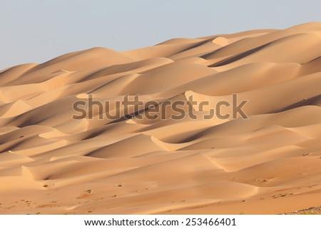 Sand dunes at the Empty Quarter desert in the Emirate of Abu Dhabi, United Arab Emirates - stock photo