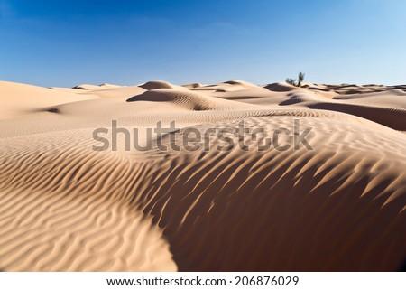 Sand dunes desert of Sahara, South Tunisia - stock photo