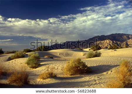 Sand Dunes in Death Valley National Park , California, USA - stock photo