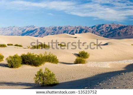 Sand dunes in Death Valley National Park near Stovepipe Wells. - stock photo