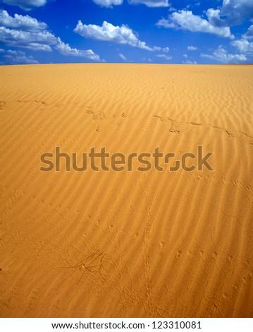 Sand dunes in Little Sahara SP, Waynoka, OK - stock photo