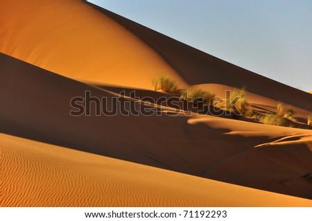 sand dunes in sahara desert , morocco - stock photo