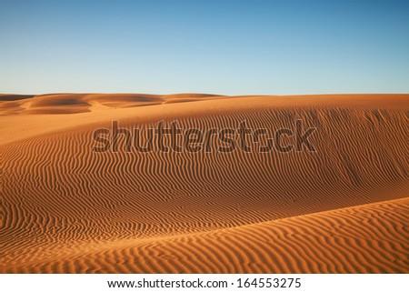 sand dunes in the desert of sahara in morocco - stock photo