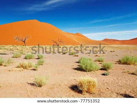 Sand dunes of Namib Desert, Sossusvlei, Namibia - stock photo