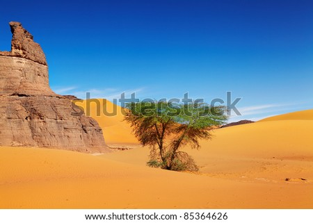 Sand dunes of Sahara Desert, Algeria - stock photo