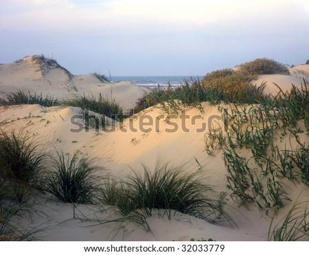 Sand dunes on South Padre Island National Seashore, Texas. - stock photo