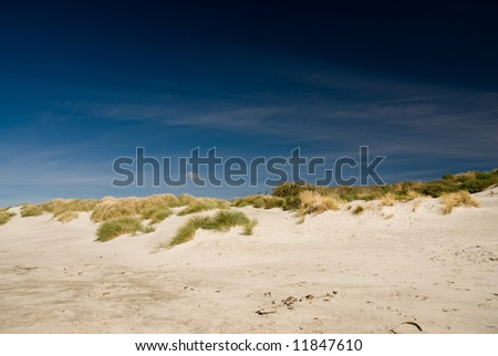 sand dunes with grass an blue sky.