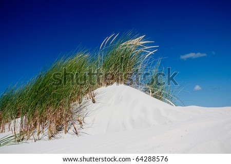 Sand dunes with grass and blue sky - stock photo