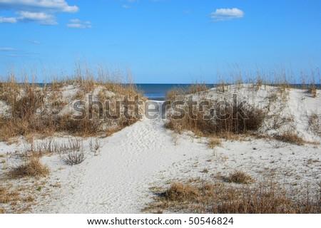 Sand dunes with ocean - stock photo