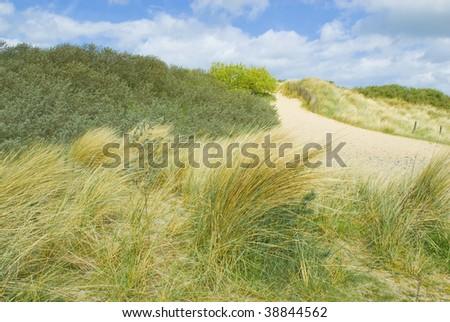 Sand duns along the Belgian coast - stock photo