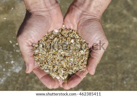 sand fairy shells in hands in Paraty in Brazil