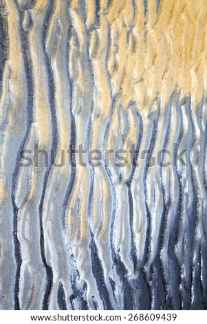 sand in the beach abstract thailand kho tao bay of a  wet    south china sea - stock photo