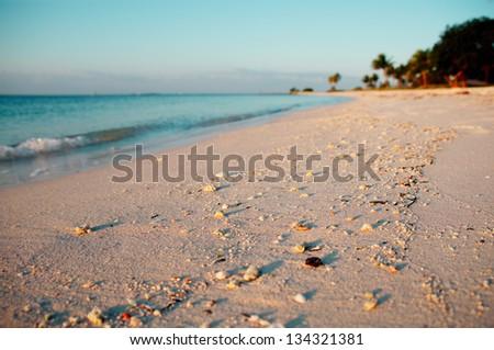 Sand of Sombrero Beach, Marathon Island, Florida Keys, USA. - stock photo