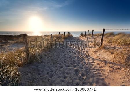 sand path to North sea beach, Zandvoort aan Zee, North Holland, Netherlands - stock photo