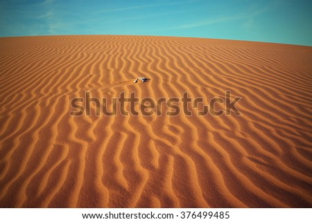 sand Sahara desert in Morocco near Mhamid  - stock photo