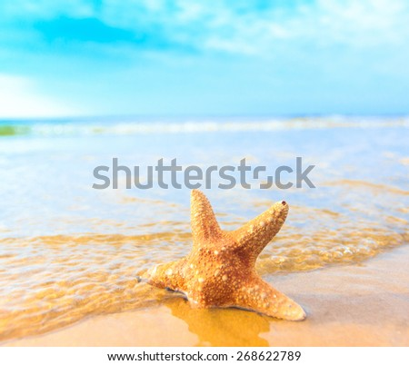 Sand Sea Dream  - stock photo