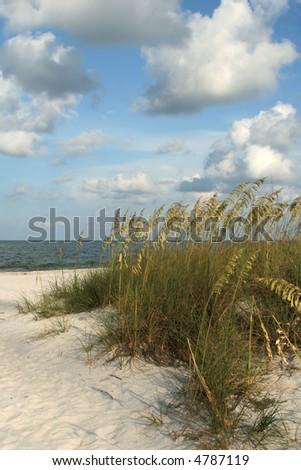 Sand,Seaoats,sky on Florida Gulf Coast Madeira Beach Florida - stock photo
