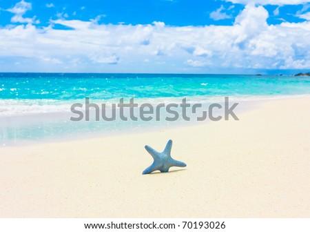Sand Stars Sea - stock photo