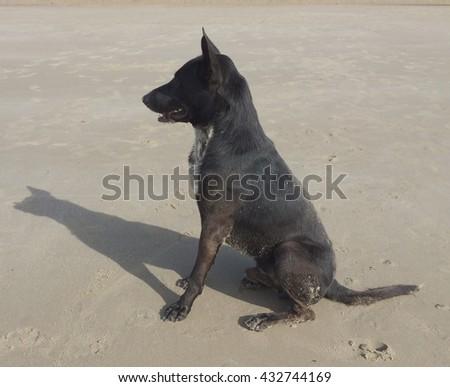 Sand symbol beach. - stock photo