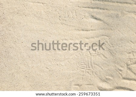 Sand texture. Sandy beach for background. Top view - stock photo